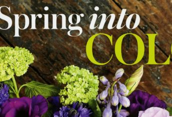 Flower Magazine Spring 2013