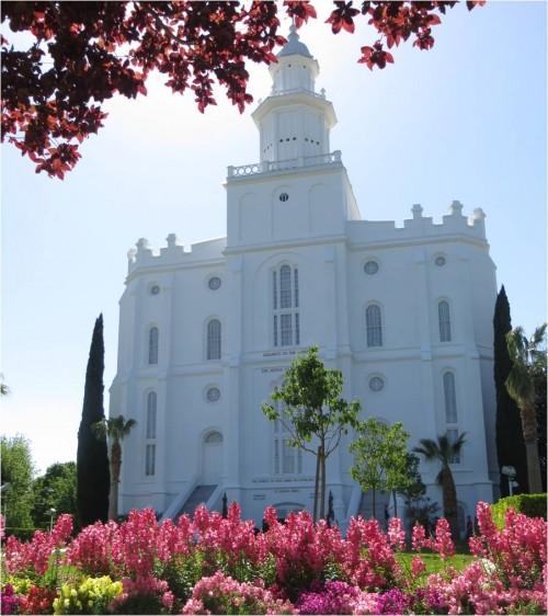 St George, Utah  Mormon Temple Flowers-My Flower Journal .com