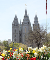 The Church of Jesus Christ of Latter-day Saints Salt Lake City Temple - My Flower Journal