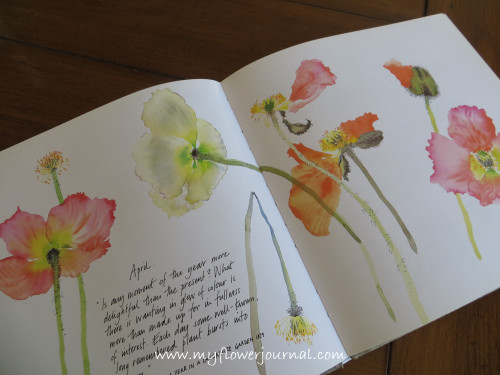 Watercolor Flower Examples in The Painted Garden by Mary Woodin Book Review-My Flower Journal.com