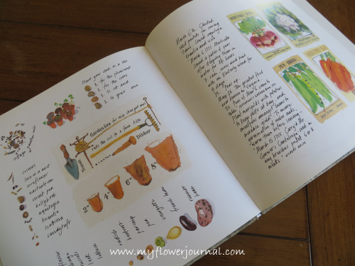 The Painted Garden by Mary Woodin Book Review-My Flower Journal.com