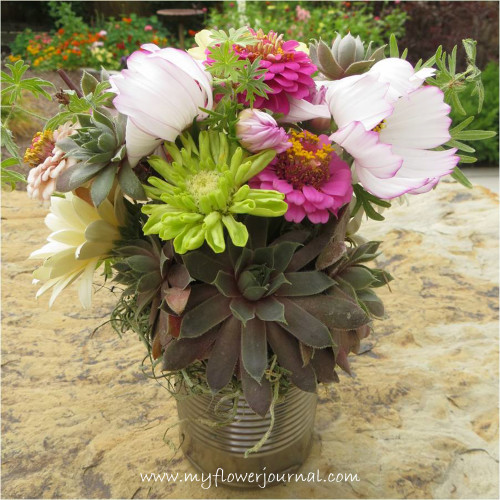 Hen and Chick and Garden Flower Bouquet in a Tin Can-myflowerjournal.com