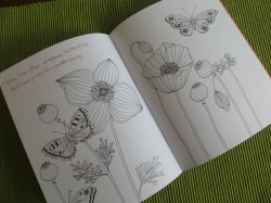 Inside pages of Avian Friends Activity Journal-myflowerjournal.com