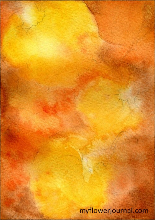 First wash of color for Watercolor Pumpkins-myflowerjournal