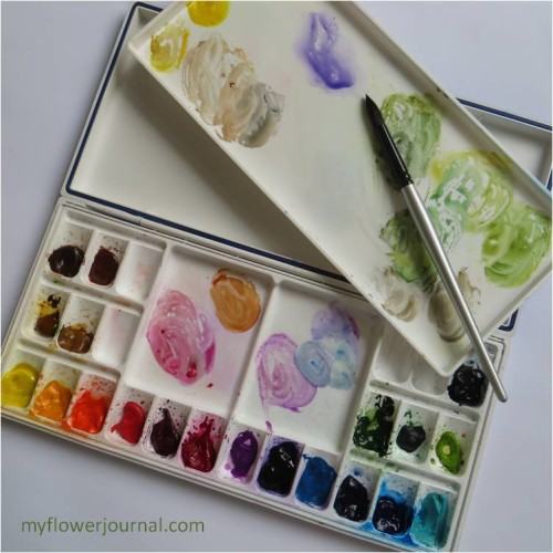 My Watercolor Paints and Heritage 24 Well Palette-myflowerjournal