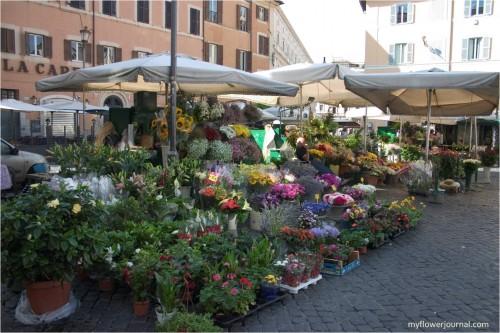 Flower Markets Near and Far-Rome Flower Market-myflowerjournal