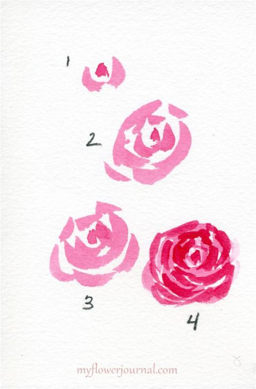 How To Paint Simple Watercolor Roses-myflowerjournal.com