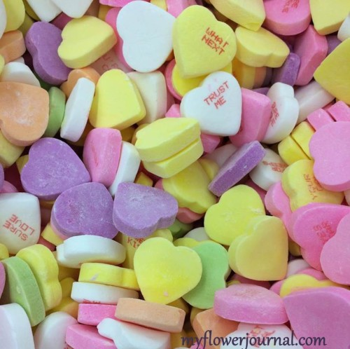 Inspiration for splattered pastel valentine hearts-myflowerjournal