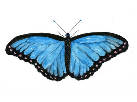 A butterfly painted in watercolor using the free butterfly printable from my flowerjournal
