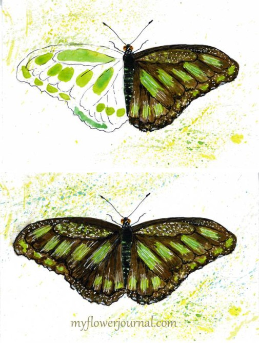 One more idea for a watercolor butterfly using the free butterfly printable and tutorial on myflowerjournal