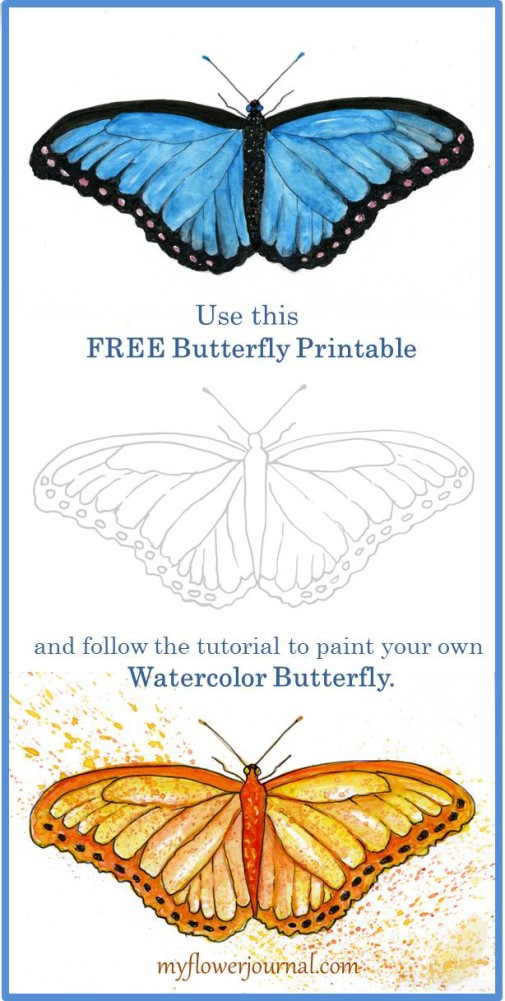 Use this free butterfly printable and follow the tutorial on myflowerjournal.com to paint your own watercolor butterfly.