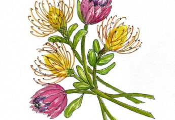 Watercolor Protea Bouquet
