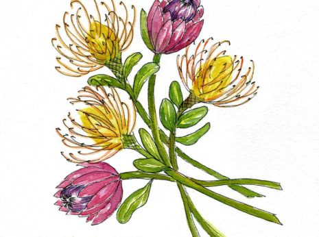 My watercolor Protea bouquet was inspired by the 31 Days of Flowers Challenge created by Brittany of from The House That Built. I love her free flower drawing video tutorials-myflowerjournal