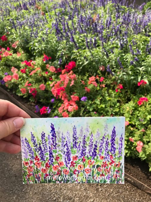 Read about how I added watercolors to acrylic paint splatters on Strathmore watercolor postcards as I did some plein air painting in a garden near my home. myflowerjournal.com